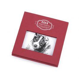 Dámska vreckovka pes, mačka, kôň / darčeková kazeta biela 1ks