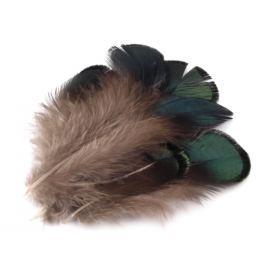Bažantie perie dĺžka 4,5-9 cm zelená piniová 200ks Stoklasa