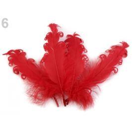 Husie perie kučeravé dĺžka 15-18 cm červená 20ks Stoklasa