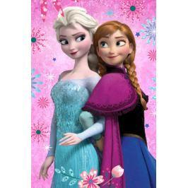 Fleecová deka licenčná Frozen Flowers 100x150