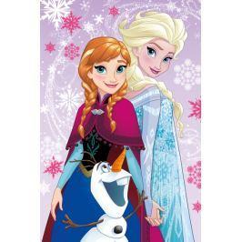 Deka fleecová detská Frozen Magic 100x150