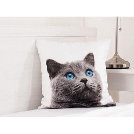 Detský vankúšik Britská mačka fototlač 3D 40x40