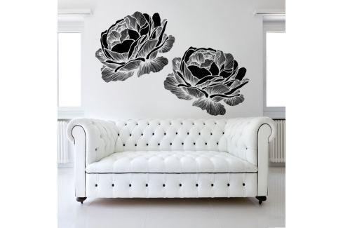 Housedecor Samolepka na stenu Black roses 120x90 cm