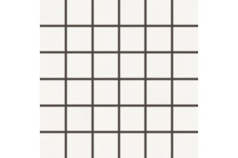 Mozaika Rako Blend biela 30x30 cm mat WDM06805.1
