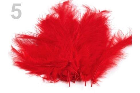 Pštrosie perie dĺžka 9-16 cm červená 10sáčok Stoklasa