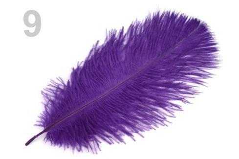 Pštrosie perie dĺžka cca 20-25 cm fialová purpura 2ks Stoklasa